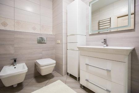 bathroom interior in a modern style