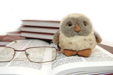 Bird an eagle owl a symbol of wisdom and knowledge photo