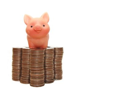 protects: The small pig protects your money