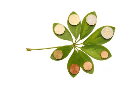 winning stock: Green leaves with euro coins  on white background Stock Photo