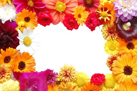 Framework from flowers with petals of various colours photo