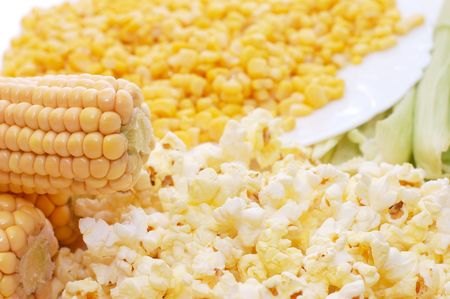 Fresh corn, preserved corn and popcorn Stock Photo - 5730555