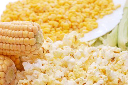 Fresh corn, preserved corn and popcorn Stock Photo - 5730555