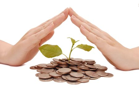 Female hands protect riches - the concept Stock Photo - 5826103