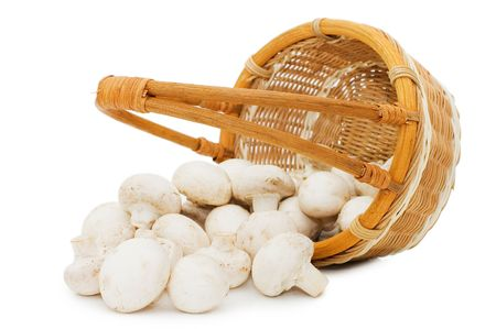 Wattled basket with field mushrooms isolated Stock Photo - 6818110