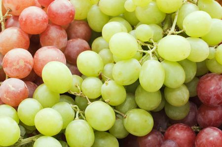 purple red grapes: Red and green fresh grapes   Stock Photo