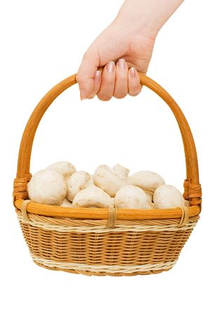 spliced: Basket with field mushrooms in a hand