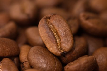 Close up macro shot of coffee bean. Selective focus on single bean.   photo