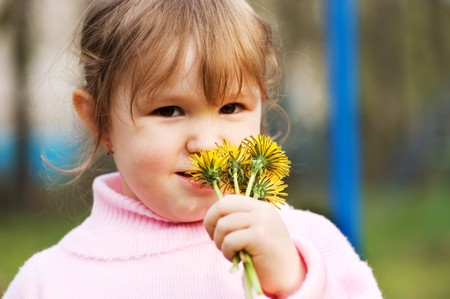smells: The little girl smells flowers
