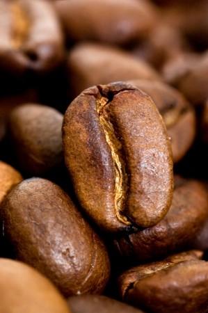 Close up macro shot of coffee bean  photo