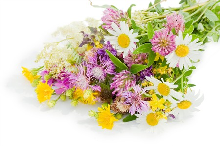 Bouquet of wild flowers isolated on white background Stock Photo - 7390107