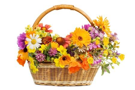 arreglo floral: Bellas flores en una cesta aislados en blanco