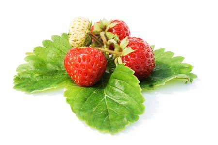 Fresh strawberry  isolated on white background  photo