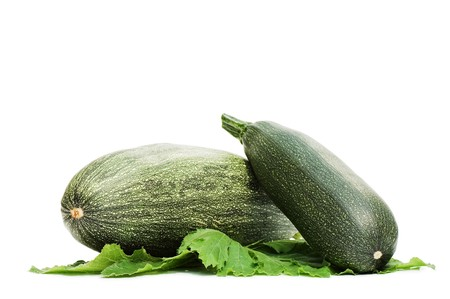 Green vegetable marrow isolated on white background Stock Photo - 7562774