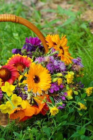 Beautiful flowers in a basket  photo