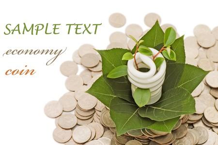 risparmio energetico: Risparmio energetico lampada con piantina verde su fondo bianco