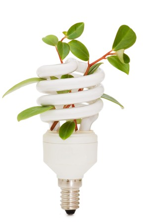 lamp power: Energy saving lamp with green seedling on white
