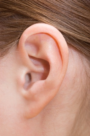 lobe: Closeup of a human ear Stock Photo