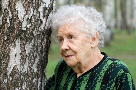 Portrait of the old woman Stock Photo - 8384035