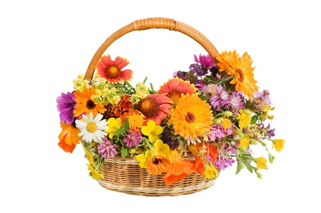 Beautiful flowers in a basket isolated on white  photo