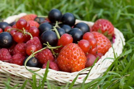 Ripe berries in a basket  photo