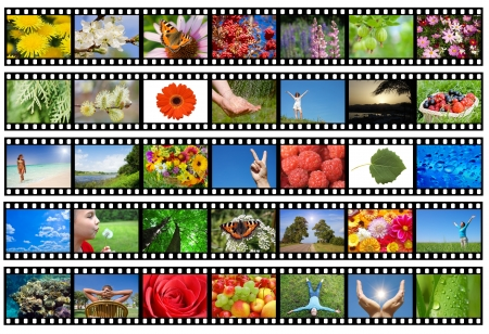 Film strip with different photos - life and nature (my photos) photo