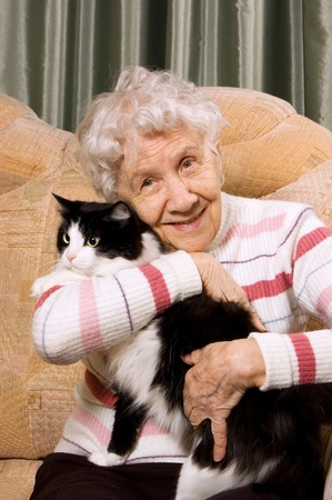 house pet: The grandmother with a cat on a sofa Stock Photo