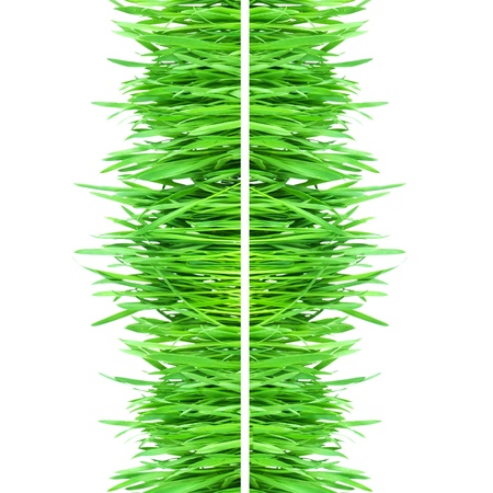 Fresh green grass isolated on white background Stock Photo - 9098040