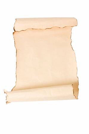 vintage parchement: Vintage roll of parchment background i