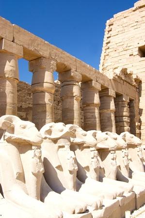 Columns at Karnak Temple, Luxor, Egypt photo