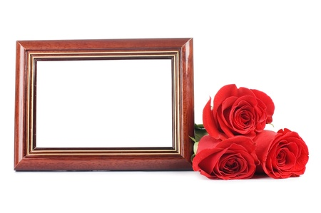 Red rose with a framework for a photo photo