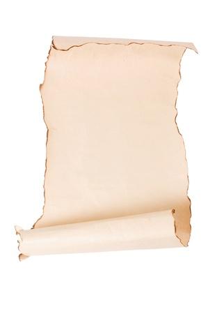 vintage parchement: Vintage roll of parchment background