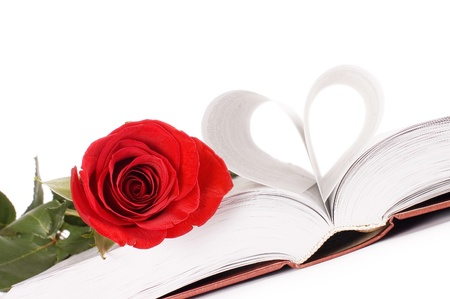 Beautiful red rose on the book photo
