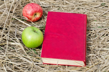 employment elementary school: The book and apples on a dry grass Stock Photo