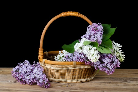The lilac bouquet in a wattled basket photo