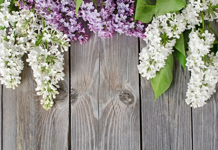 The beautiful lilac on a wooden surface photo