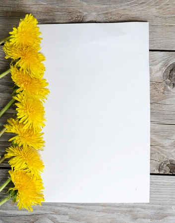 The yellow dandelion on a wooden surface