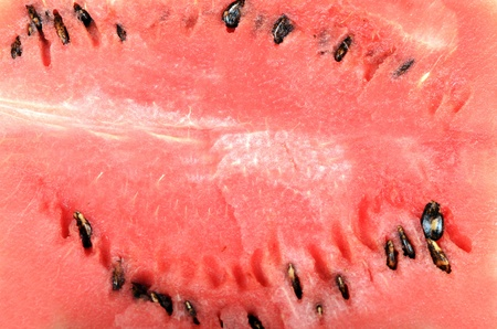 The watermelon as a background. Close up photo