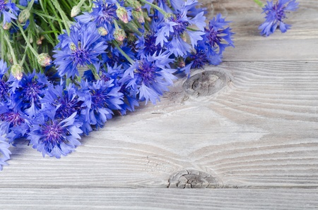 The beautiful blue cornflower on wooden background photo