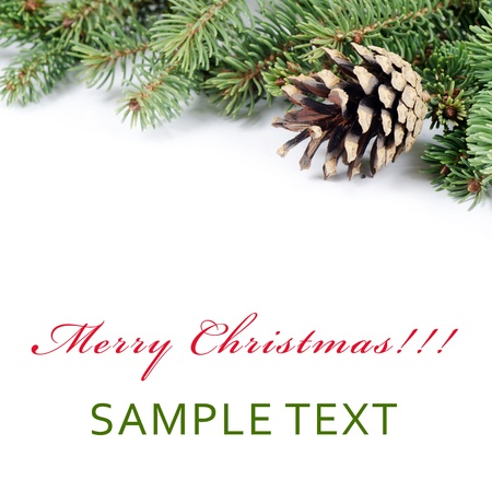 pinecone: The christmas and New Year Border  isolated Stock Photo