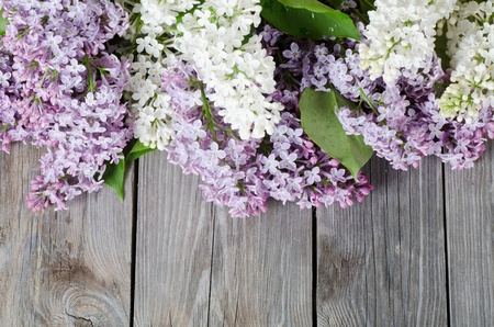 purple lilac: The beautiful lilac on a wooden surface