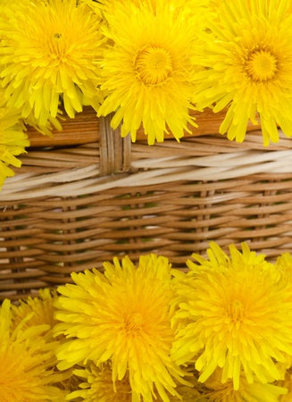small details: Beautiful flowers in a basket a background Stock Photo
