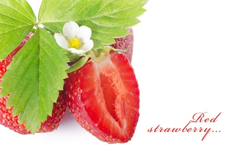 The fresh strawberry isolated on white background photo
