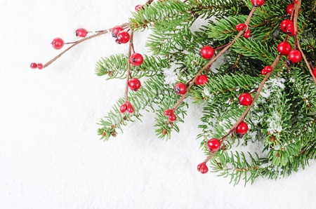 pine wreath: Christmas and New Year Border on snow Stock Photo