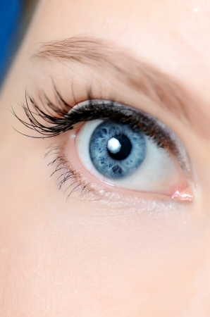 eye close up: Female eye with long eyelashes close up Stock Photo