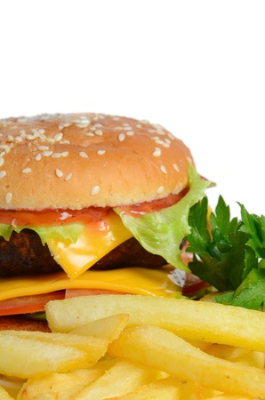 Hamburger with a potato fries close up photo