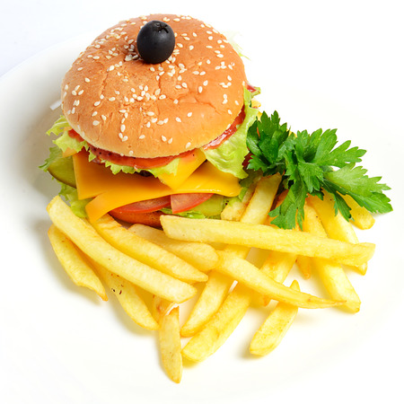 Hamburger with a potato fries close up photo