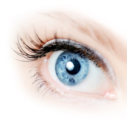 close eye: Female eye with long eyelashes close up Stock Photo