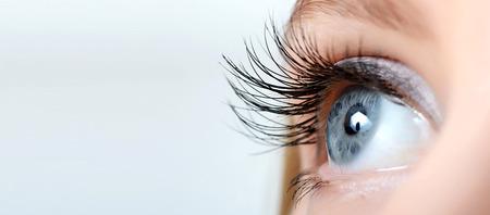 long eyelashes: Female eye with long eyelashes close up Stock Photo