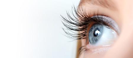 Female eye with long eyelashes close up photo
